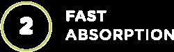FastAbsorption_title